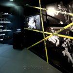 TFWE - Tax Free World Exhibition - Cannes - Palais des Festivals - PUIG